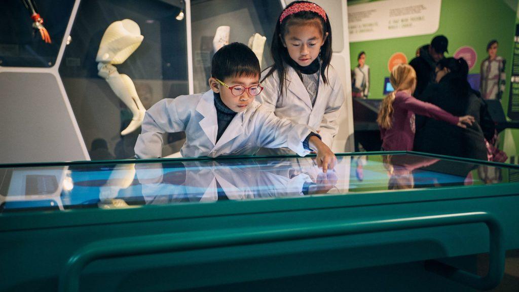 Article5-1024x576 Pourquoi aller dans un musée ?