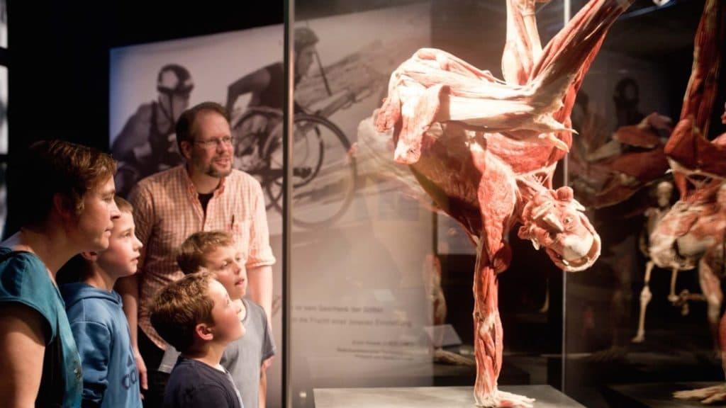 ImperialWarMuseum-1024x576 La place des émotions dans les expositions